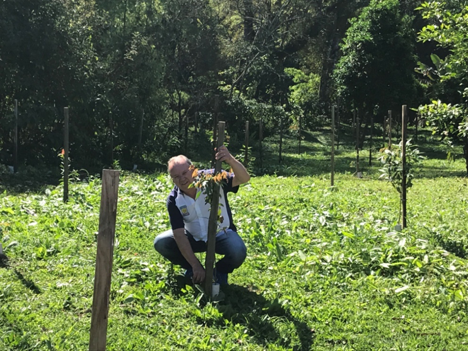 Sergio Ludwig, da Incobel, participa do plantio realizado no Dia da Árvore