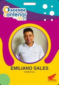 Certificado_Emiliano_Moreira_de_Sales
