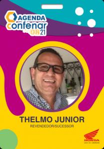 Certificado_Thelmo_E_Cargnelutti_Junior