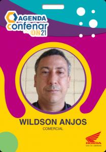 Certificado_Wildson_Ricardo_Mendonça_dos_Anjos
