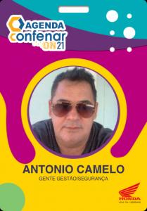 Certificado_antonio_flavio_camelo